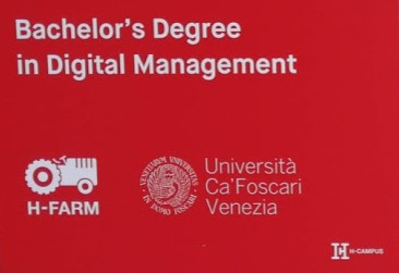 bachelor's degree digital management - corso di laurea in Digital Management